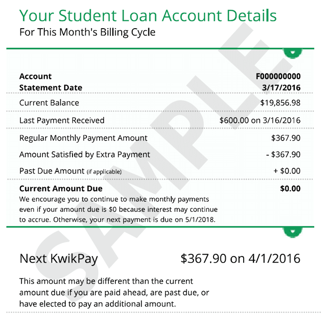 Your Student Loan Account Details